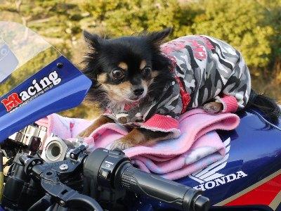 バイクとココロ 009-2