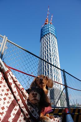 タワーと一緒に