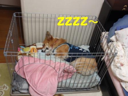 ④眠いからいいや