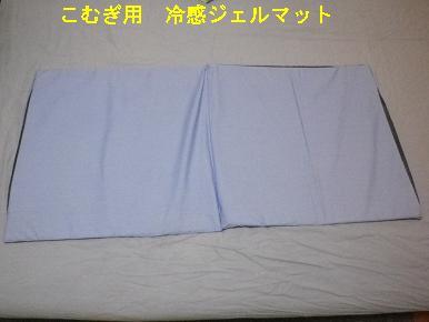 IMGP0271.jpg