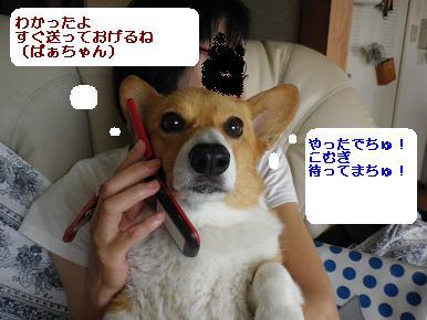 IMGP0547.jpg