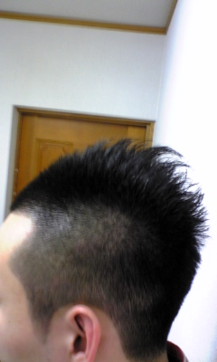 2009年2月