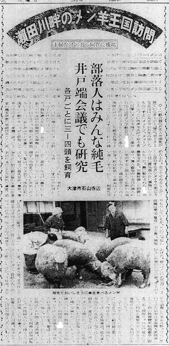 S30.1.5KS 瀬田川畔の綿羊王国b2