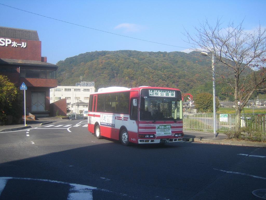 IMG_4890.jpg