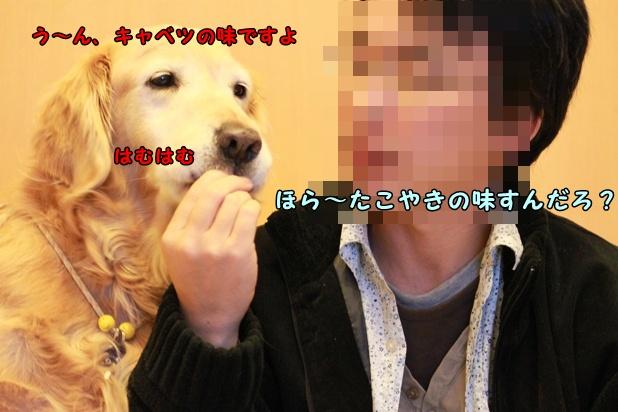 IMG_1557.jpg