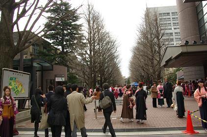 100327-01aogaku1.jpg