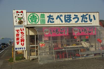 100320-01maruyoshi nouen