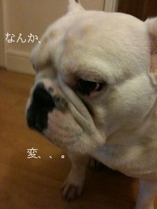blog_1FEB 001