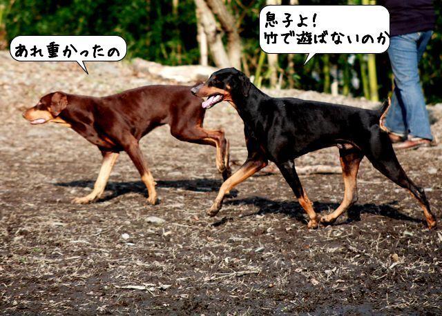 20100112_221743.jpg