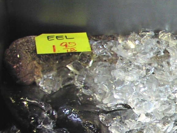 eel USD1.95