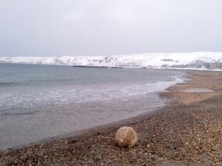 海岸220130201