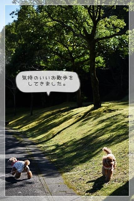 いい天気02