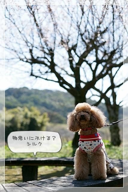 いい天気03