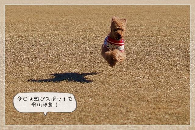 いい天気08