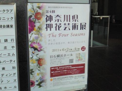 NEC_3744.jpg