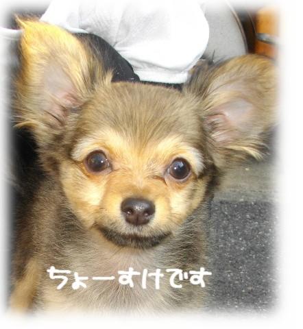 2011-04-30-003.jpg