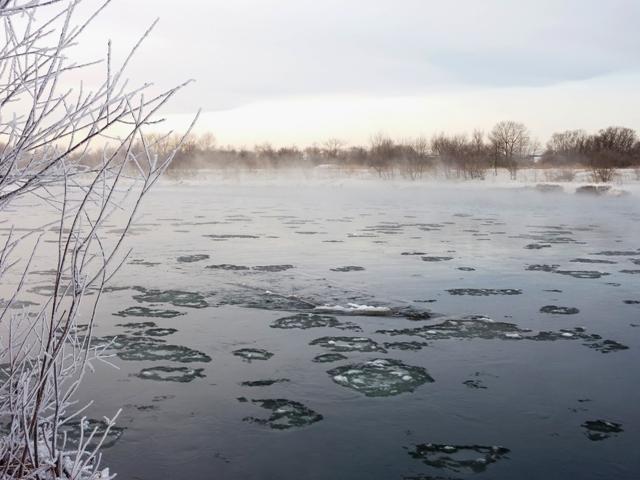 038ハス氷