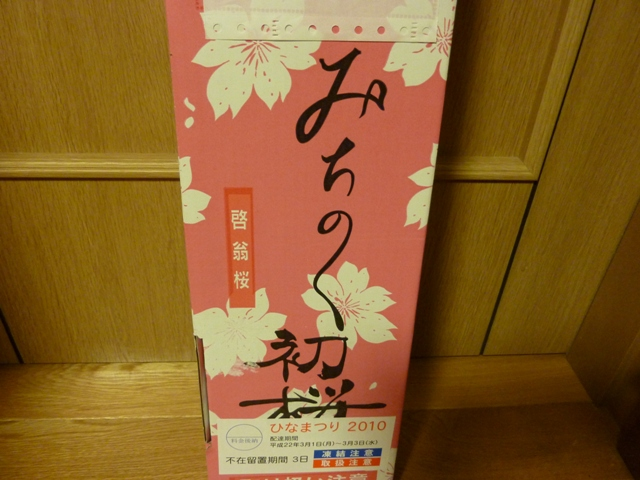003初桜