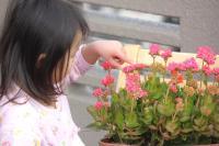 100130 花と我が娘3
