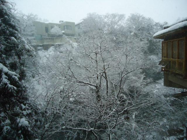 加賀雪景色DSC00559