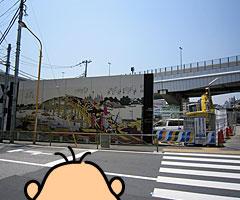 katahanoashi_1.jpg