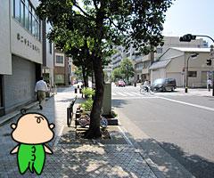 kiezunoandon_4.jpg