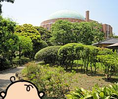 ochibanakishii_2.jpg