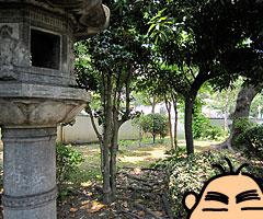ochibanakishii_5.jpg