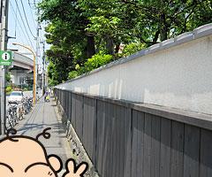 ochibanakishii_6.jpg