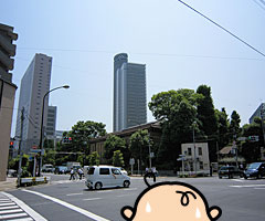 tanukibayashi_1.jpg