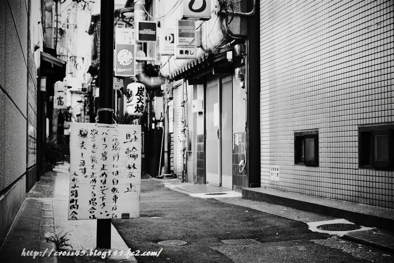D70_0736toy.jpg