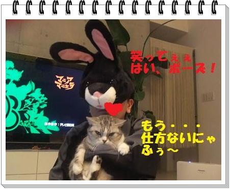 10_20110108101030.jpg