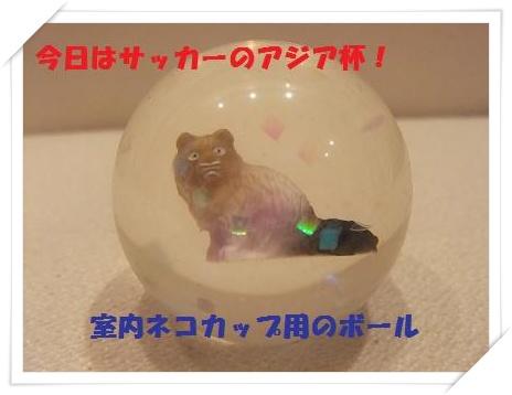 1_20110125220732.jpg