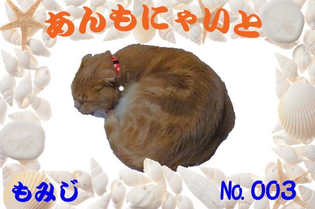もみじ君 (0)186×124