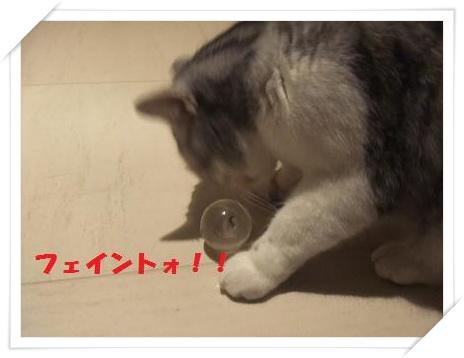 8_20110125220754.jpg