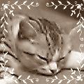 95_20110119224351.jpg