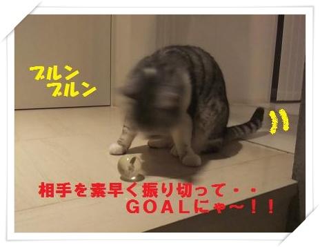 9_20110125220754.jpg