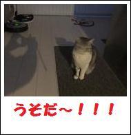 DSCF4910_20110105225232.jpg
