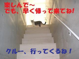 PICT0796.jpg