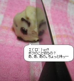 image2785294.jpg