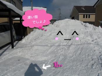 雪捨て場。