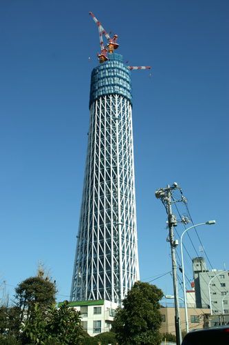 2010011305.jpg