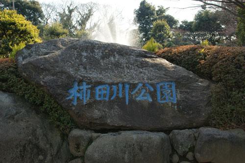 2011021510.jpg