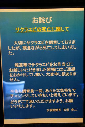 2011122106.jpg