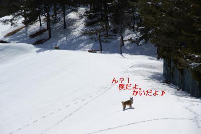 2月らしい気候22