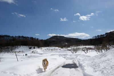 2月らしい気候14
