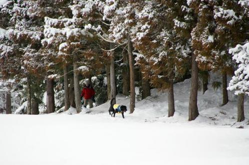 雪国育ち6
