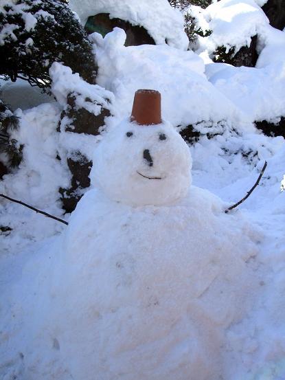 雪の実家2
