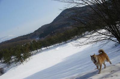 絶好調な雪山トレッキング18