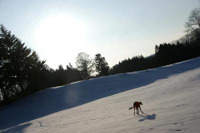 絶好調な雪山トレッキング20